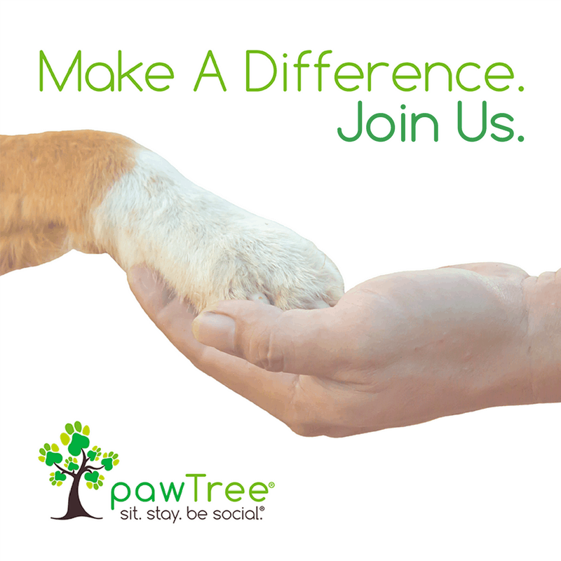 Love Pets Join Pawtree Todays Work At Home Mom