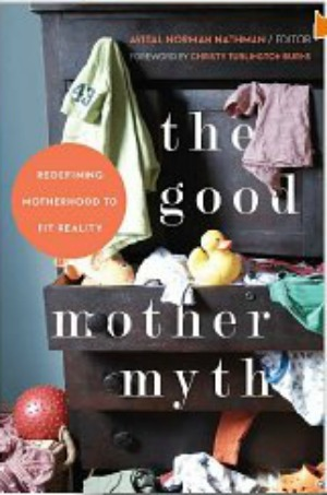 The Good Mother Myth book review
