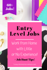 Entry Level Remote Jobs - Work from Home with No Experience pi